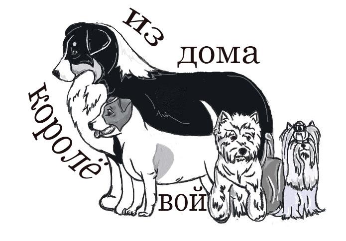 """Австралийские овчарки питомника """"Из дома Королёвой"""" V_dzhetr"""